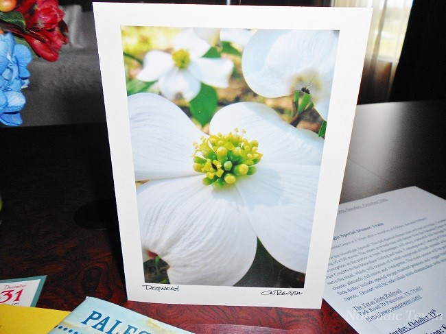 Dogwood Blossom on  Our Card