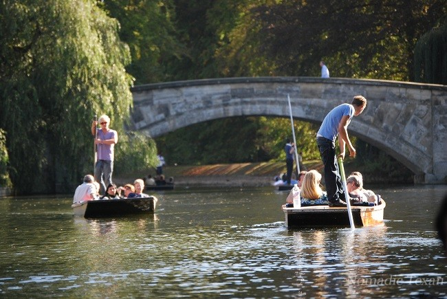 Summer Punting