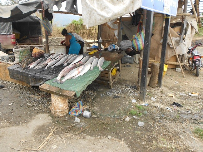 Local Rural Fish Market