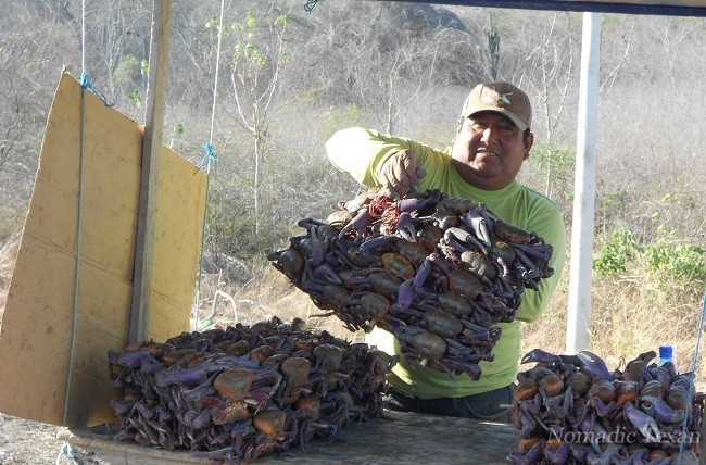 Vendor-selling-fresh-water-crabs-on-the-HWY-to-Salinas-Blog