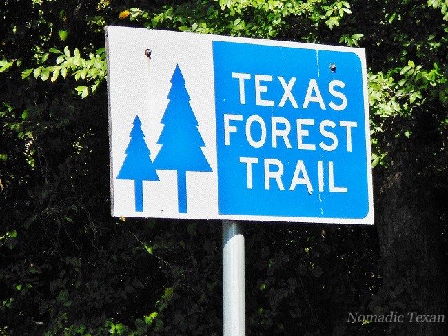 Forest Trails Abound Throughout Texas