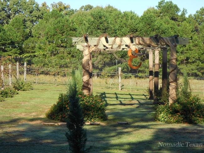 Vineyard Arbor