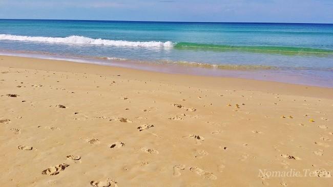 Centara Beach